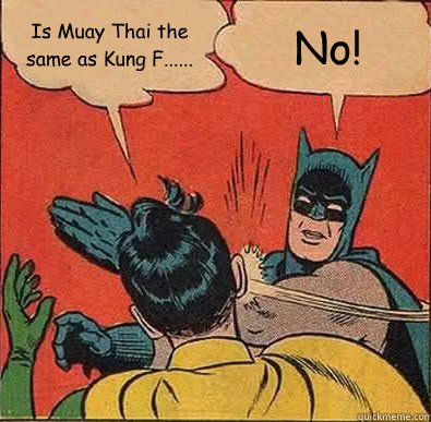 Muay Thai Batman and Robin